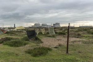 Dungeness122017-1