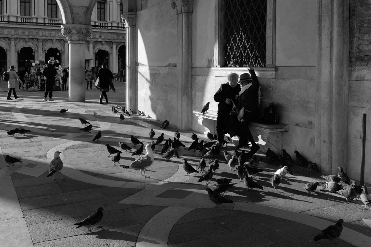 2019-05-Venice-6