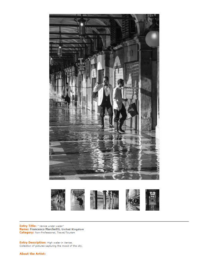 IPA_2013_Venice