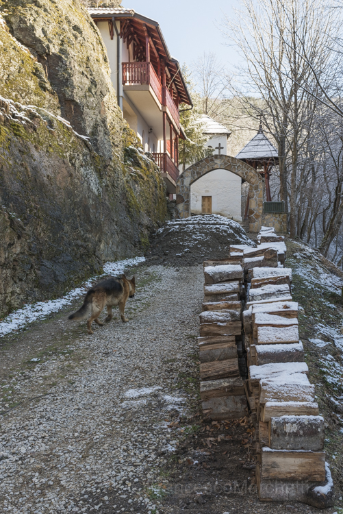 blog_rural_serbia-4